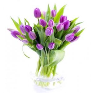 Тюльпан лиловый 17шт