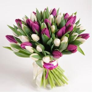 Тюльпаны поштучно,  код 1002