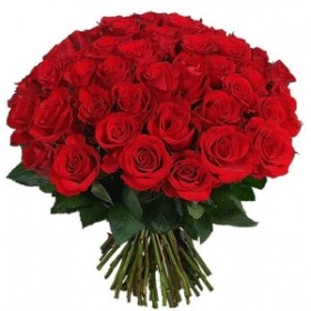 Роза красная 51шт код 1019